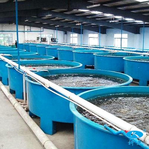 玻璃钢养殖槽定制