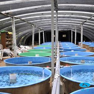 玻璃钢仔鱼培育槽
