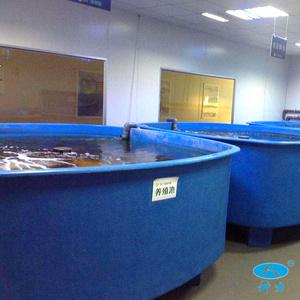 玻璃钢水产育苗槽